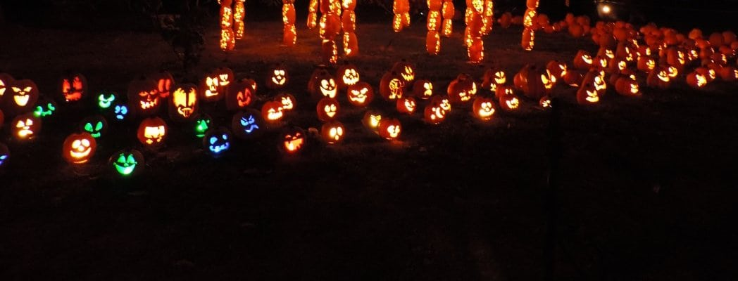 The Rise of the Jack O' Lanterns Halloween Extravaganza