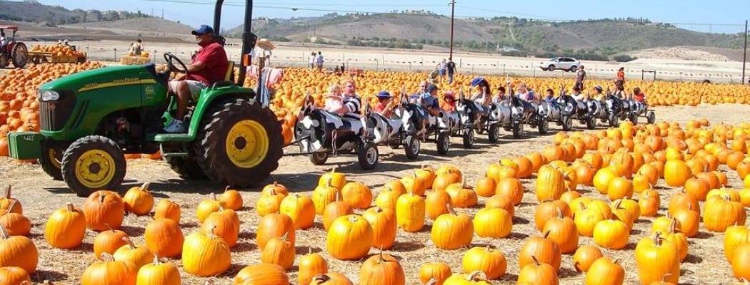 Underwood Family Farms' Fall Harvest Festival