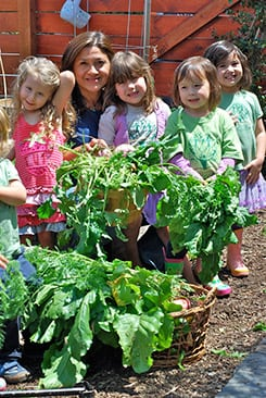 Harvesting time at Green Beginning Community Preschool. PHOTO COURTESY GREEN AMERICA