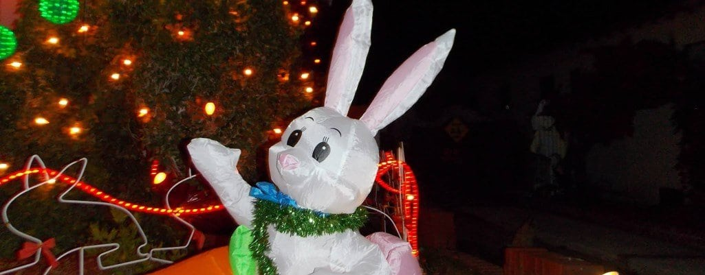 The Bunny Museum's Christmas Holiday Event