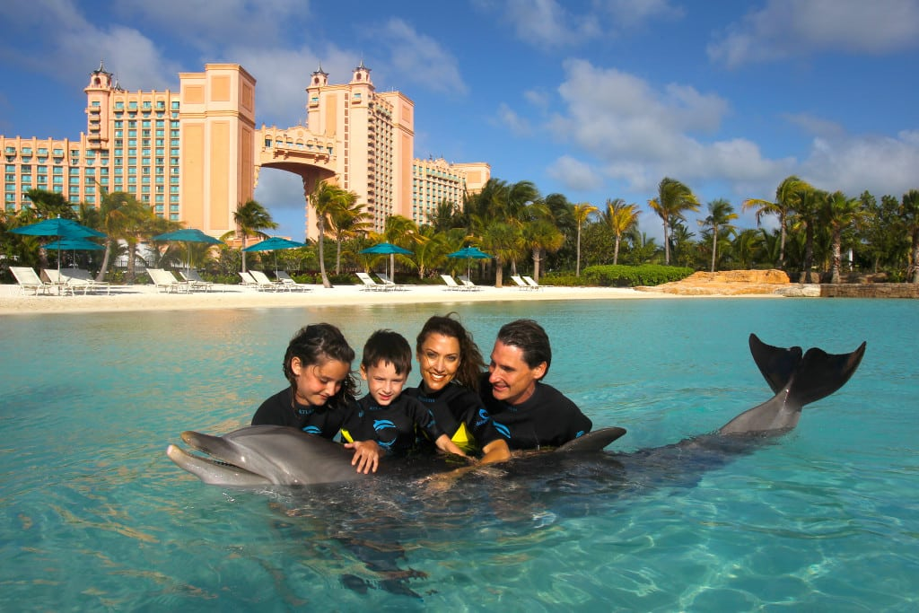 Dolphin Cay fun ideas for kids