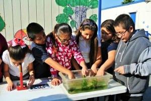 Los Angeles Schools Jefferson Elementary