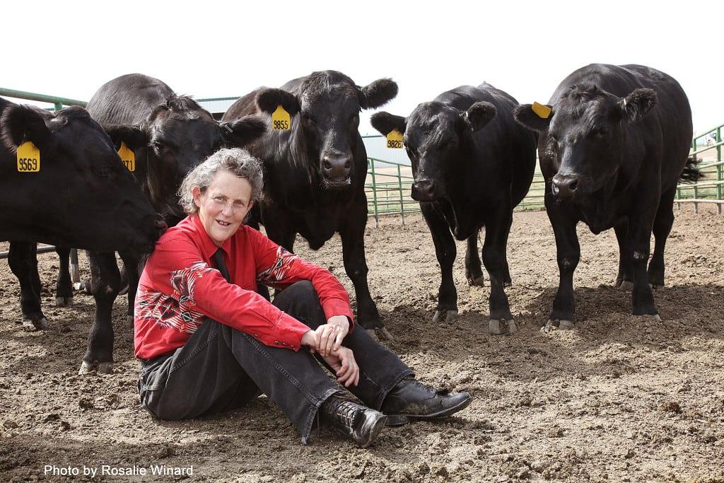 Special Needs Temple Grandin