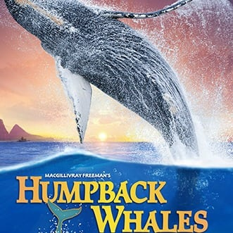 los angeles events humpback whales screening