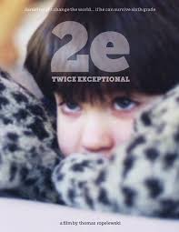 special needs Twice Exceptional DVD