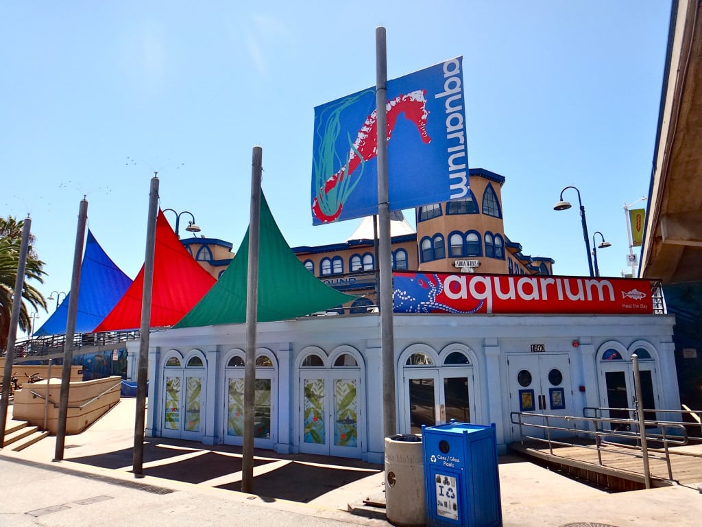 fun summer activities Santa Monica Pier Aquarium