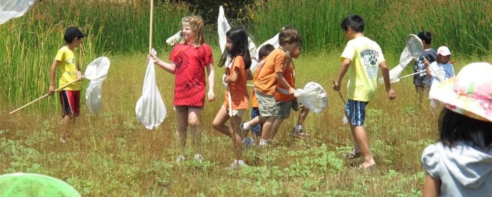 Make A Difference Day at Madrona Marsh Preserve