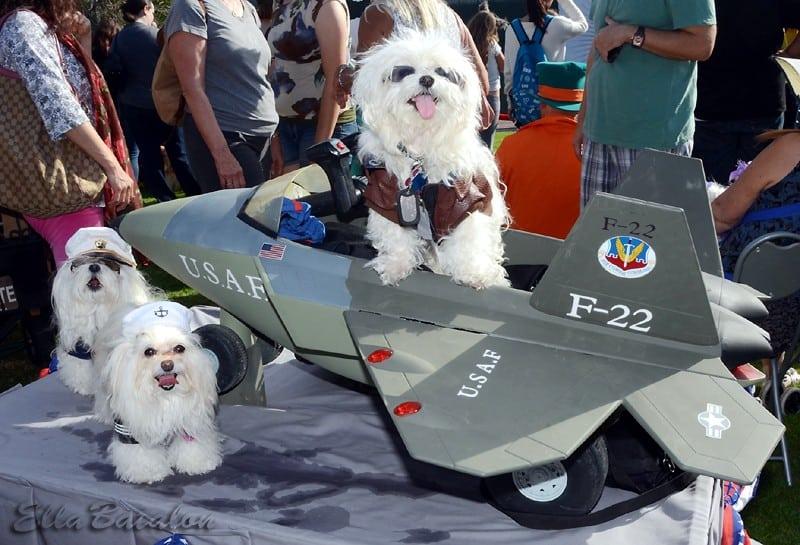Halloween Costume Parade & Haute Dog Howl'oween Parade