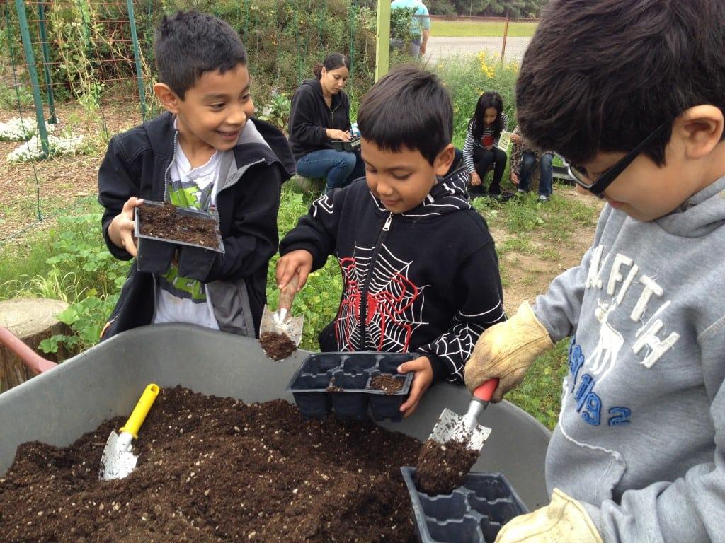 Fun ideas for kids - Garden School Foundation