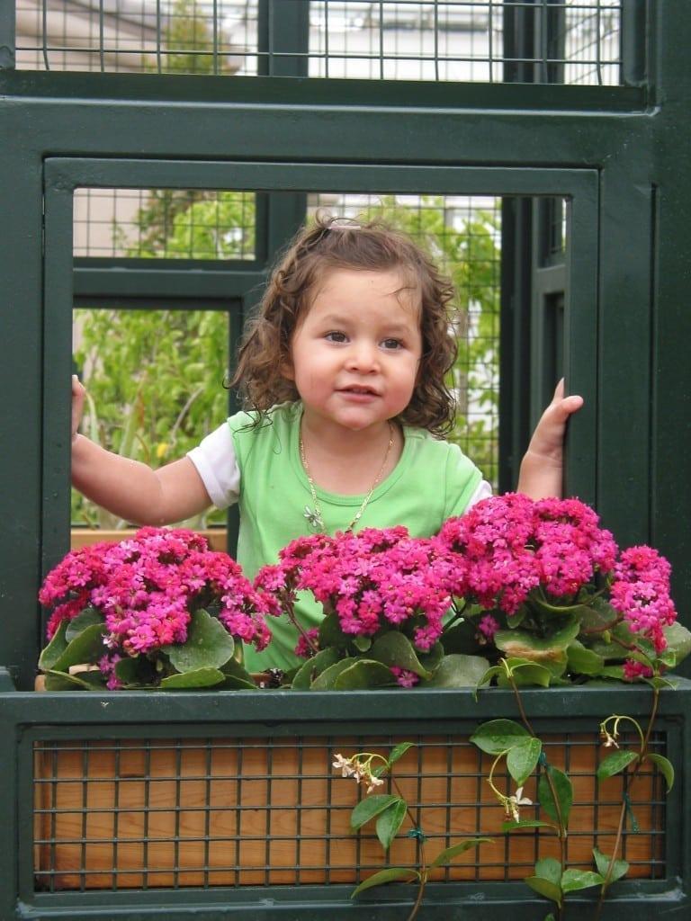 family fun - huntington garden