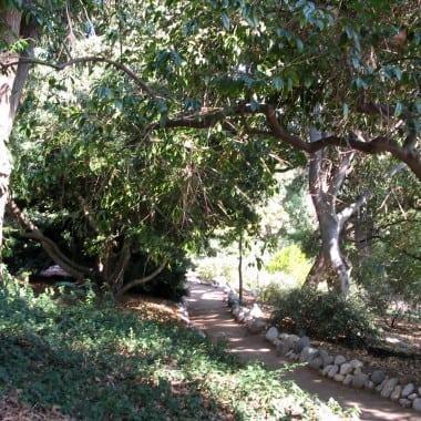 family fun - Matthias Botanical Garden