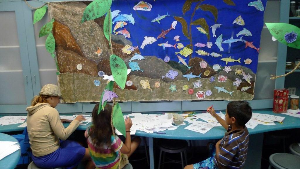 The Santa Monica Pier Aquarium has special programs for World Ocean Day. PHOTO BY TARA CROW