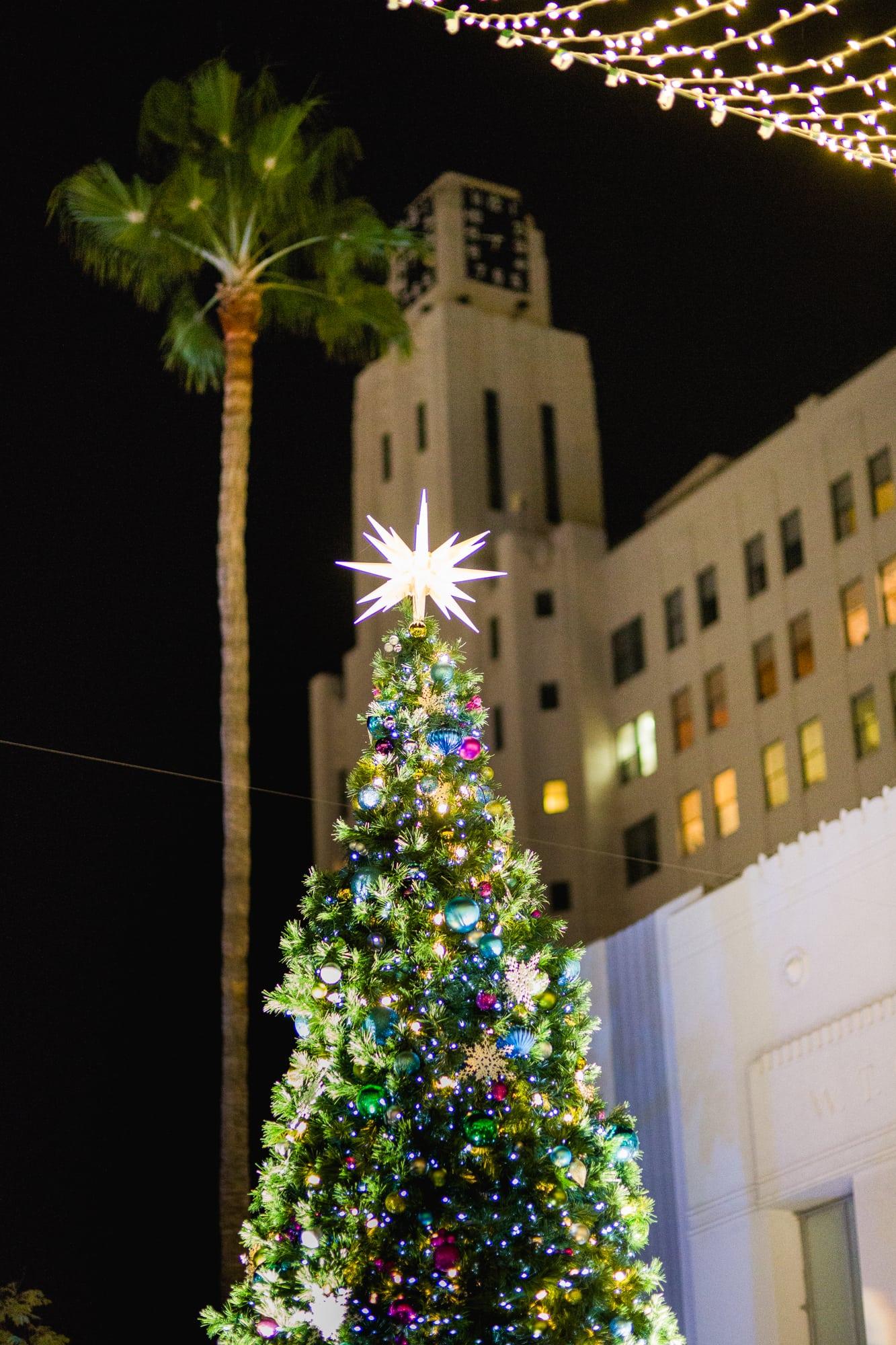 Santa Monica Holiday Tree Lighting