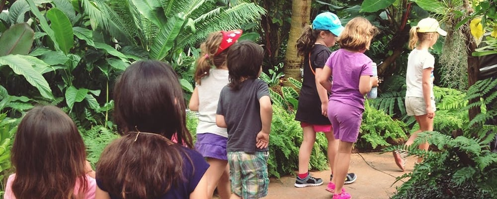 Botanical Adventures