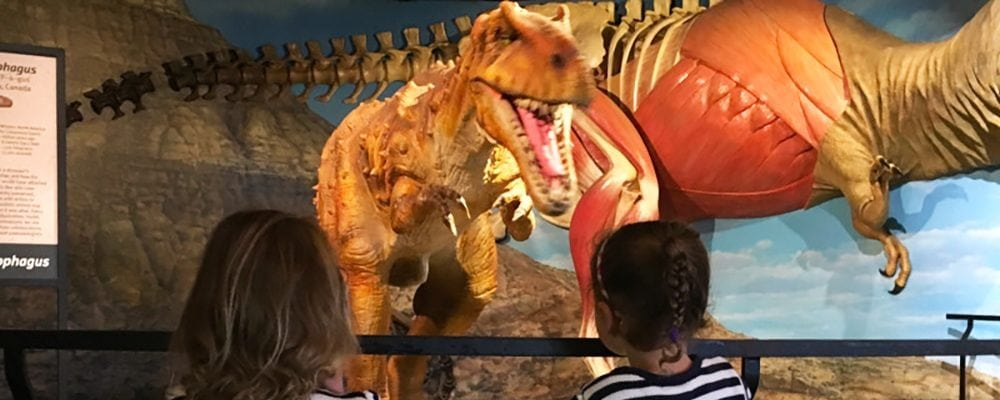 Dinosaurs Unearthed Exhibit