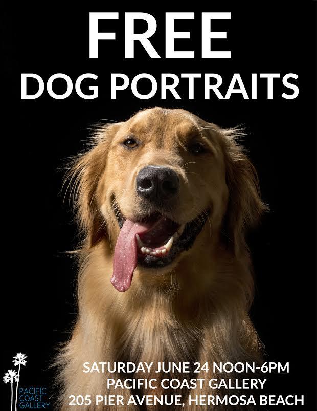 Free Dog Portraits!