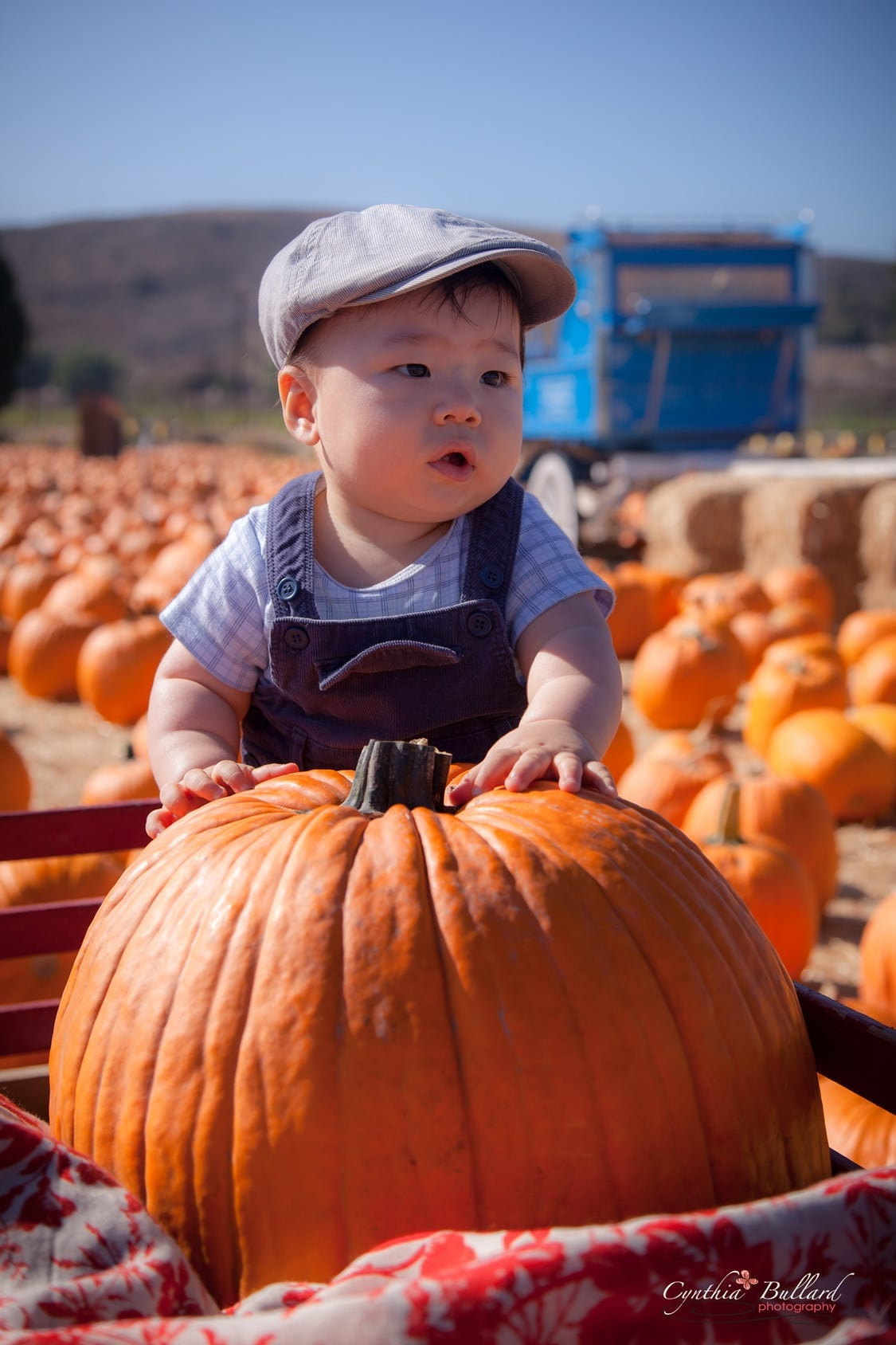 Underwood Family Farms' Fall Harvest Festival