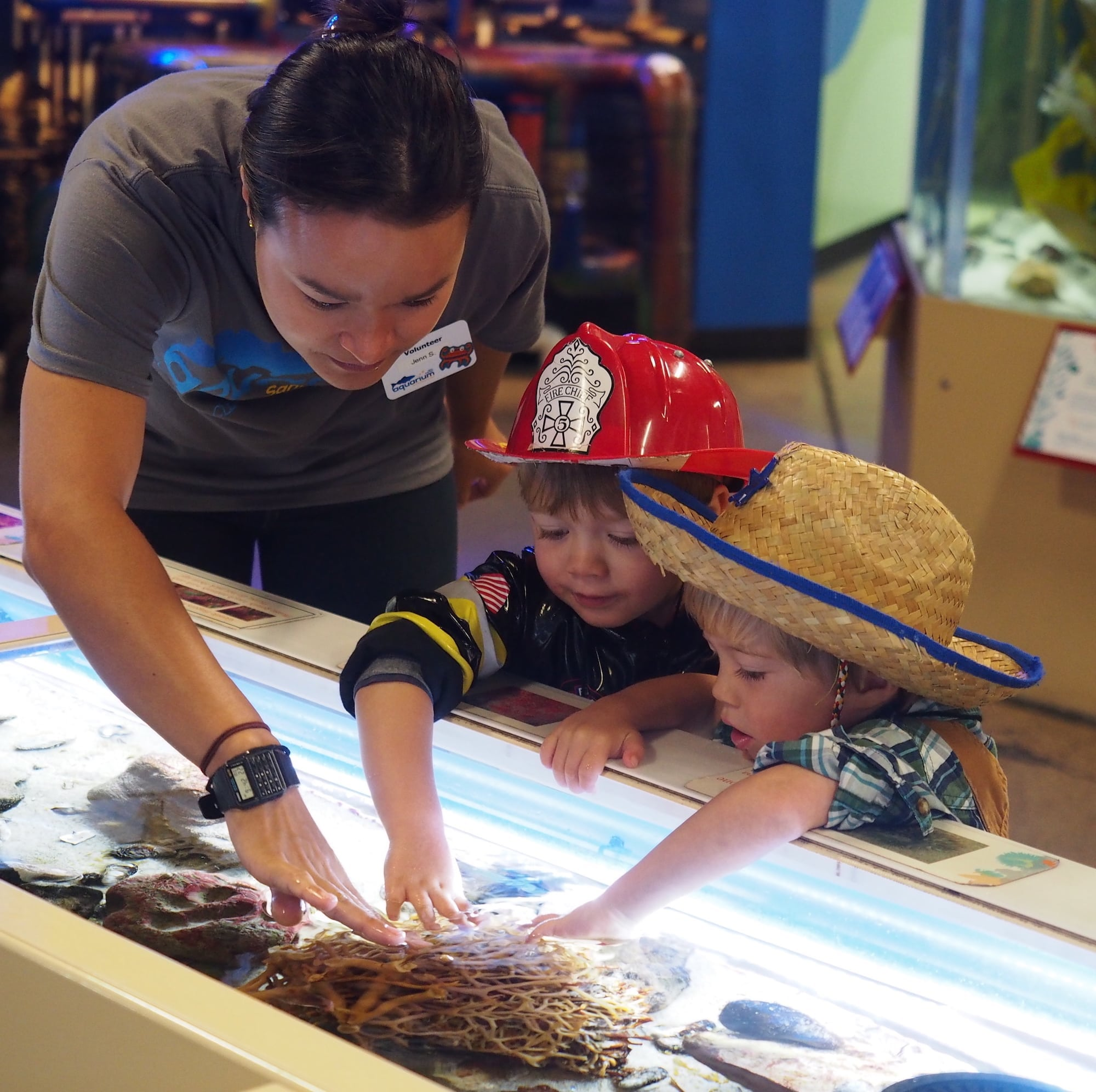 Heal the Bay Aquarium's Fishy Fest