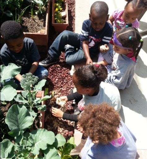 Little Urban Farmers Learning Space Open House & Seed Planting