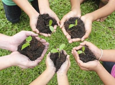 South Coast Botanic Garden Kids Club: Thanks-Digging