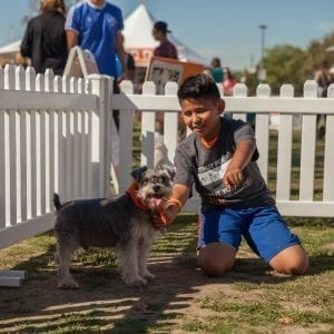 events for dogs in la