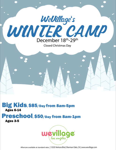WeVillage's Winter Camp