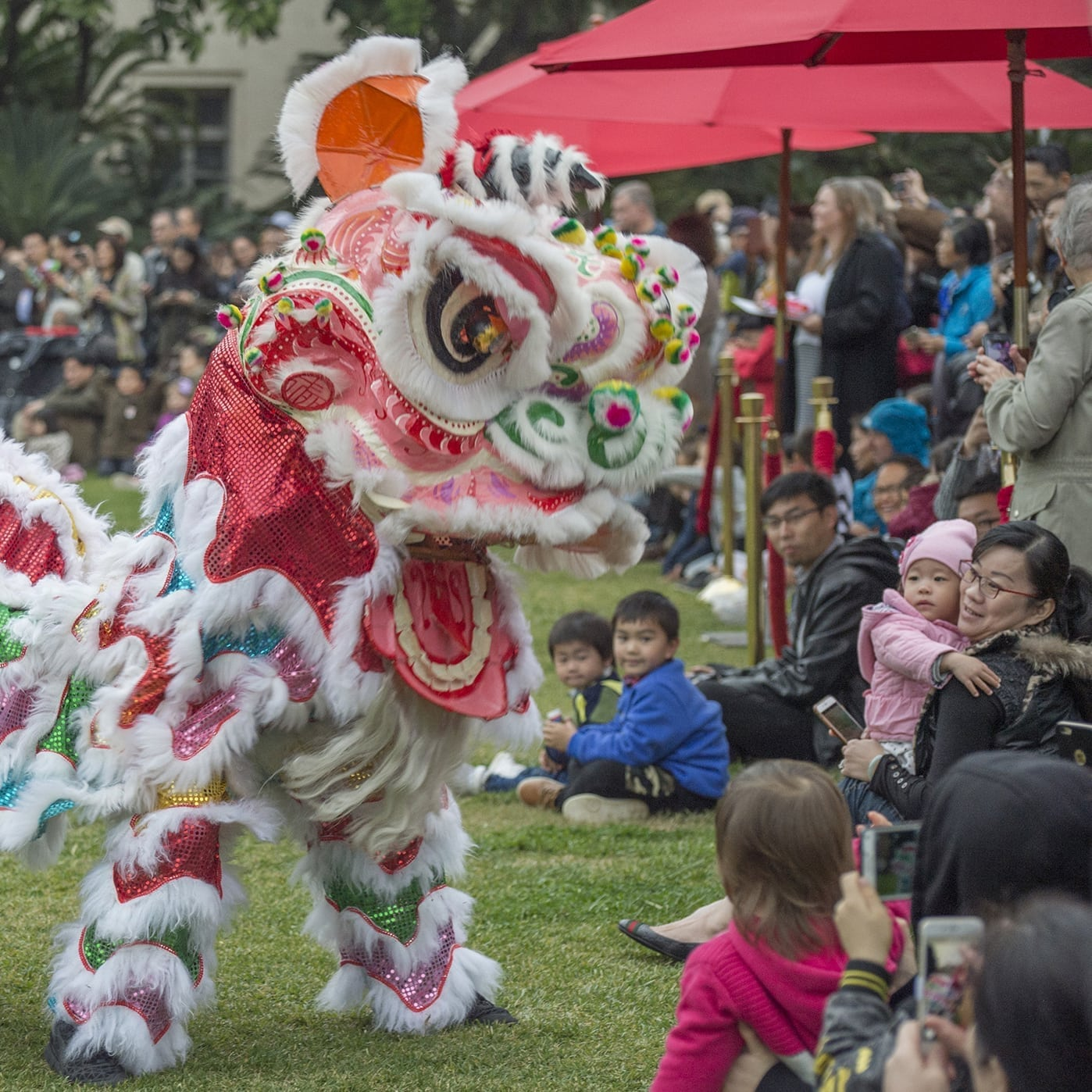 Golden Dragons, Lion Dancers And The Year Of The Dog