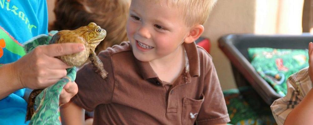 Eagle Rock Plaza Kids Club: The Reptile Family