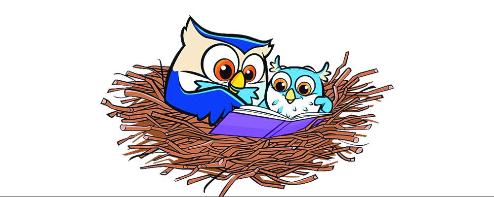 Little Owl's Reading Nest
