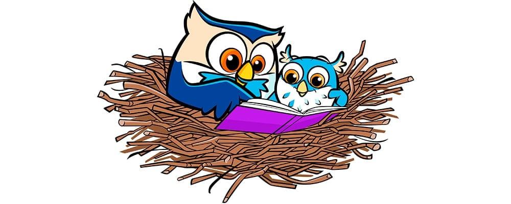 Little Owls Reading Nest