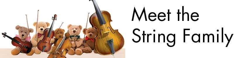 Meet the String Family: Teddy Bear Concert