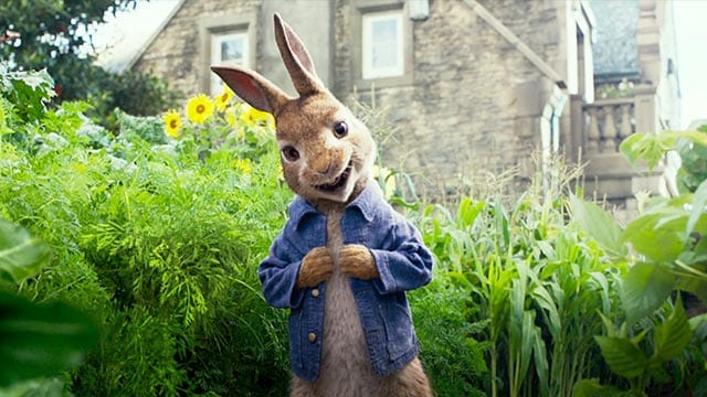 My Way Matinee - Peter Rabbit