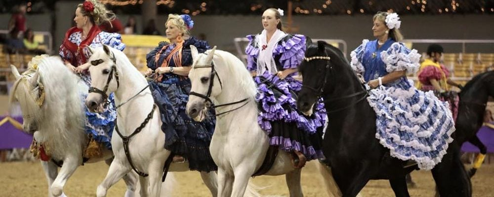 20th Annual Fiesta Charity Spectacular and Horse Show
