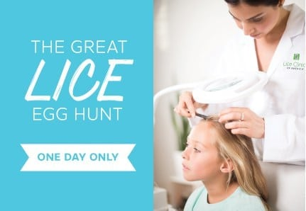The Great Lice Egg Hunt