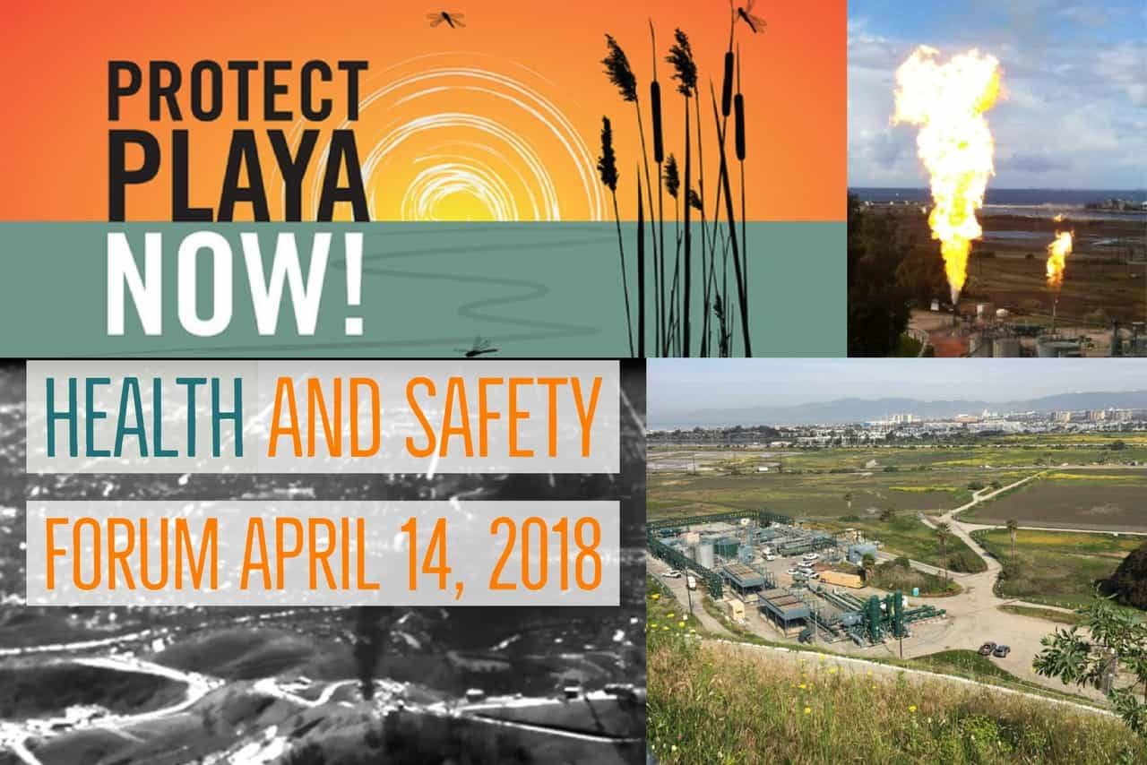 Protect Playa Now! Health and Safety Forum