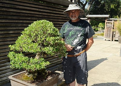 Huntington Family Tour: Bonsai Builders