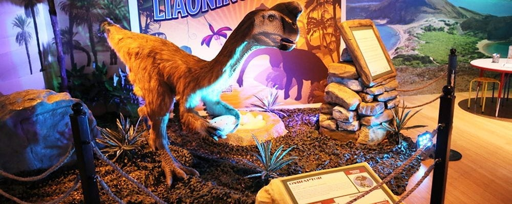 Dinosaurs Around The World Exhibit