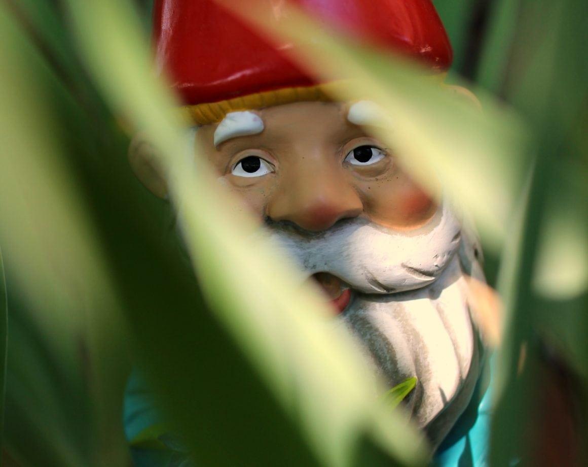 SCBG Kids Club: Gnome Garden