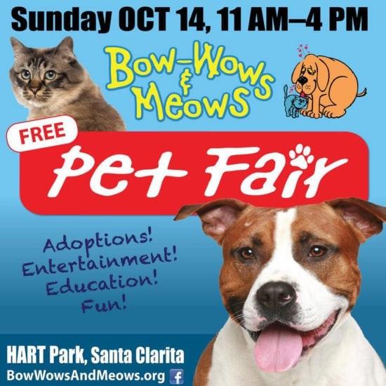 18th Annual Bow-Wows & Meows Pet Fair