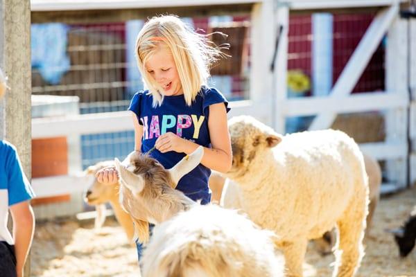 Danny's Farm Family Fun Day