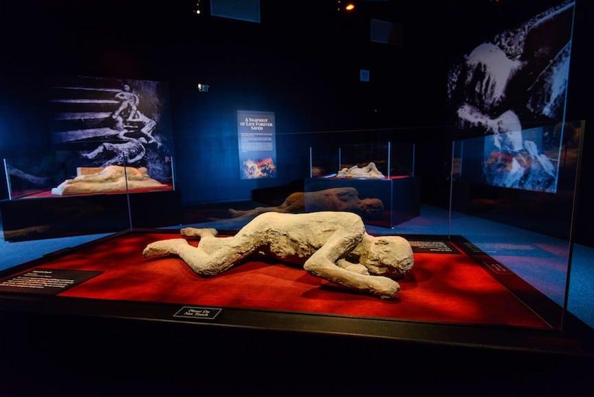 PompeiiThe Exhibition