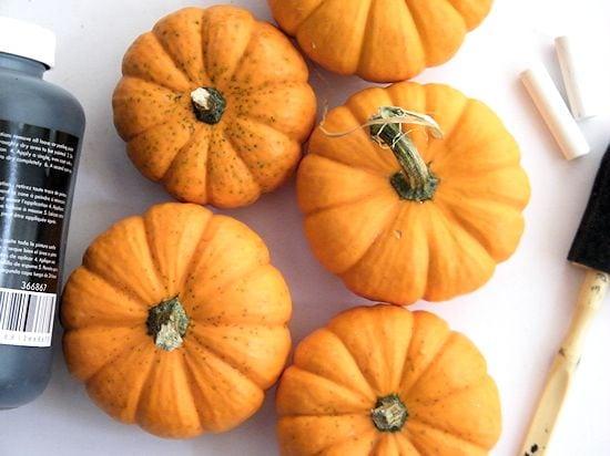 Zimmer Sunday Program: Mini Pumpkin Party