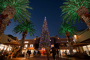 Citadel Outlets' 17th Annual Tree Lighting Ceremony and Concert