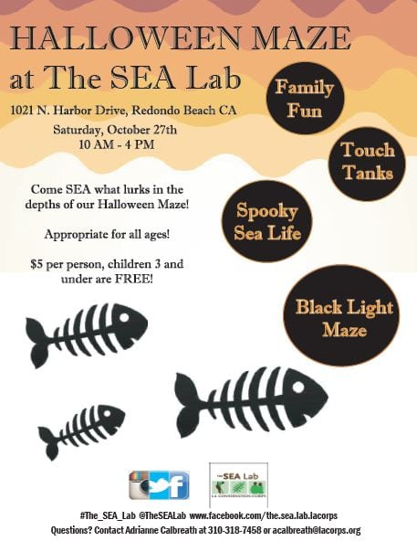 Halloween Maze at The SEA Lab