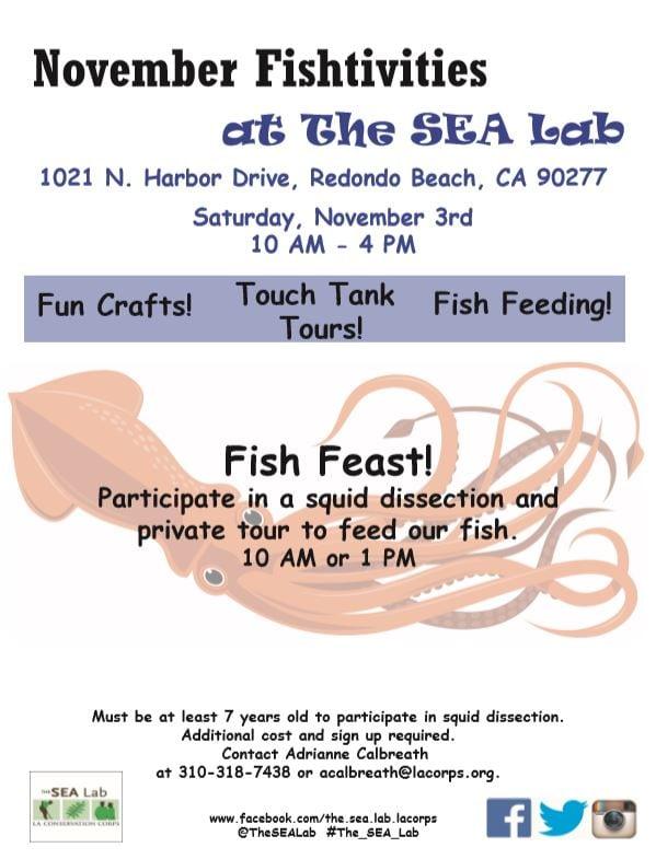 November Fishtivities: Fish Feast