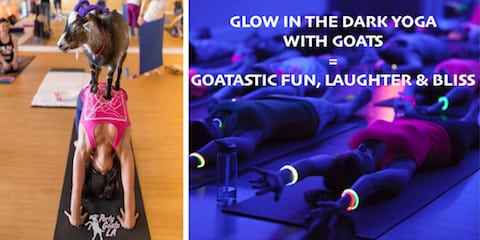 Glow Goat Yoga & Sound Experience