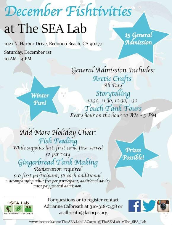 December Fishtivities at The SEA Lab