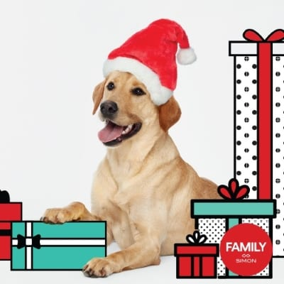 Pet Photo with Santa