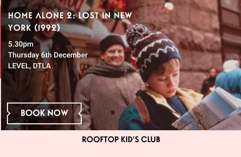 Holiday Movie on the Roof:  Home Alone 2