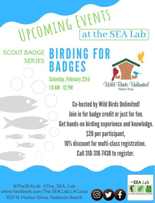 Scout Badge Series: Birding for Badges